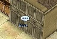 Rachel Bookshelf.jpg
