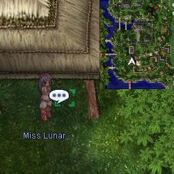 Lunar Pet Food.jpg