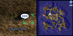 Nientranceq crow.jpg